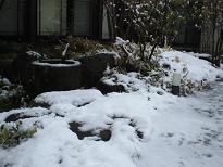 ブログ「へっぱく in裏庭」-2013 yuki 2