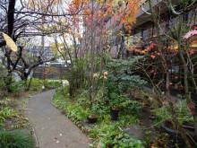 2014.12 お庭