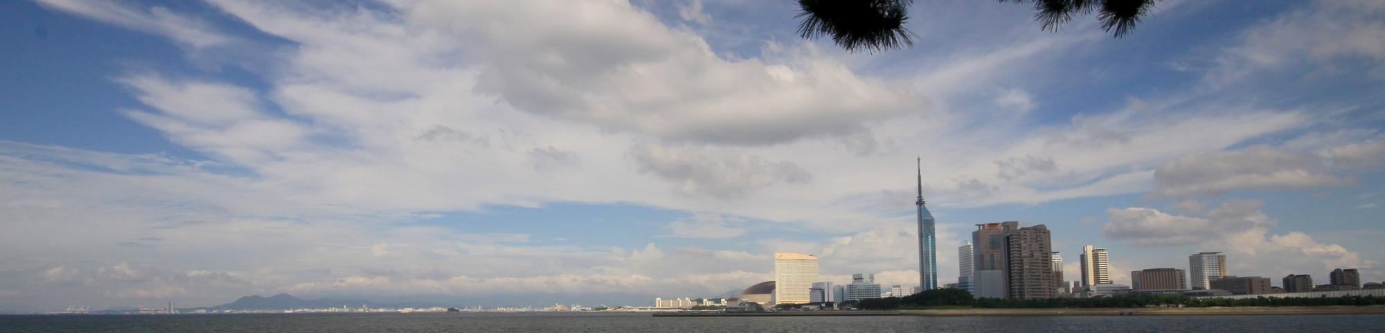 トライティ|姪浜応援企業!