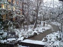 ブログ「へっぱく in裏庭」-雪景色①