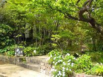 ブログ「へっぱく in裏庭」-4月のお庭