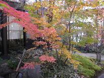 ブログ「へっぱく in裏庭」-2012 紅葉 1